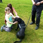 George the search dog at the Family Fun day