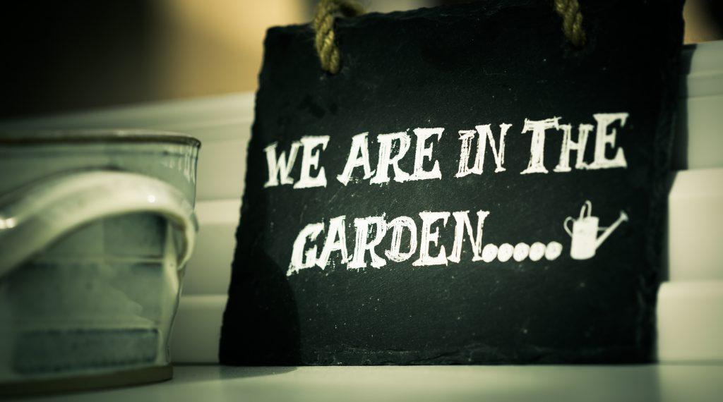 pexels-in-the-garden