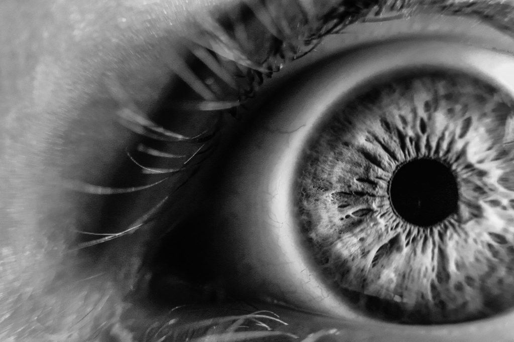 the human eye in black and white