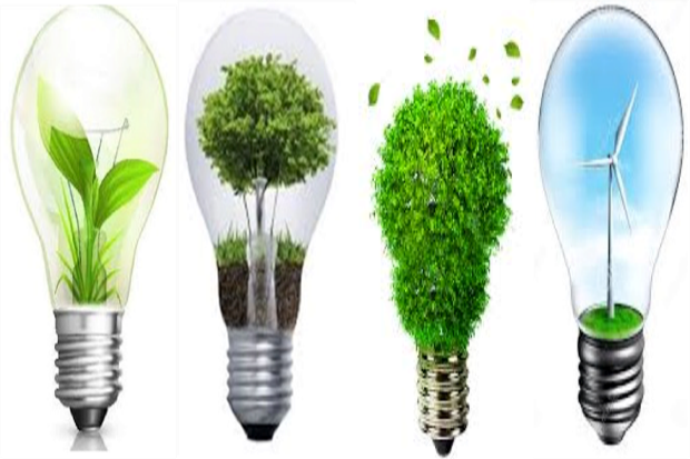 4 lightbulbs being used to protect the environment